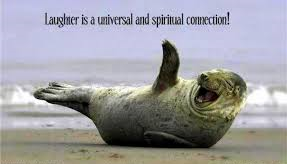 Laughing Seal for WoW